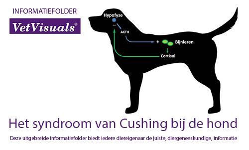 Informatiefolder over het syndroom van Cushing bij de hond
