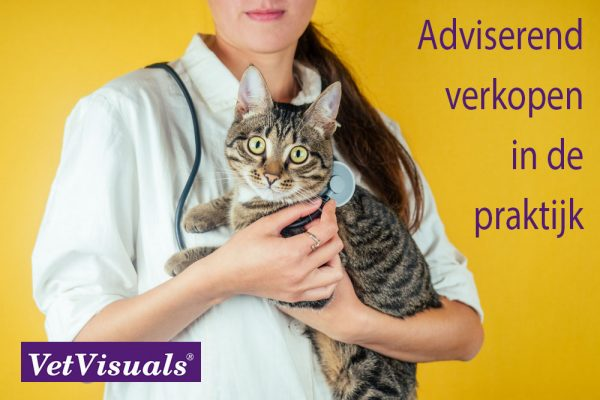 dierenartsassistent paraveterinair
