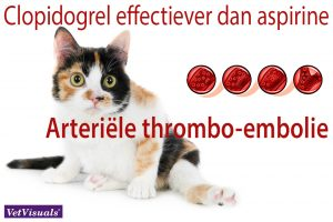 Arteriële thrombo-embolie clopidogrel acetylsalicylzuur