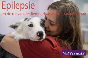Epilepsie en de rol van de dierenartsassistent paraveterinair