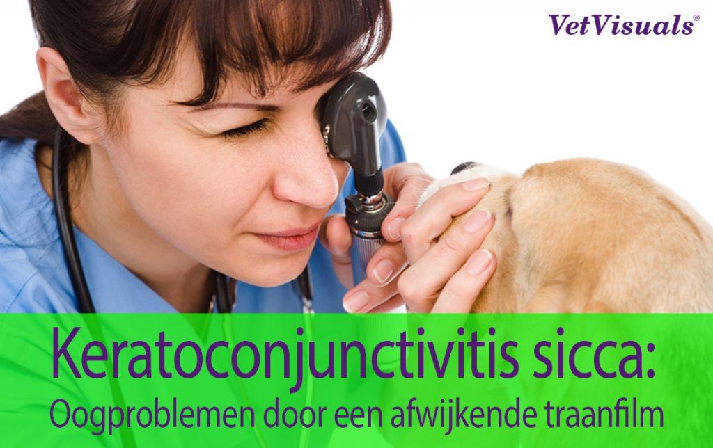 Keratoconjunctivitis sicca: Oogproblemen door een afwijkende traanfilm