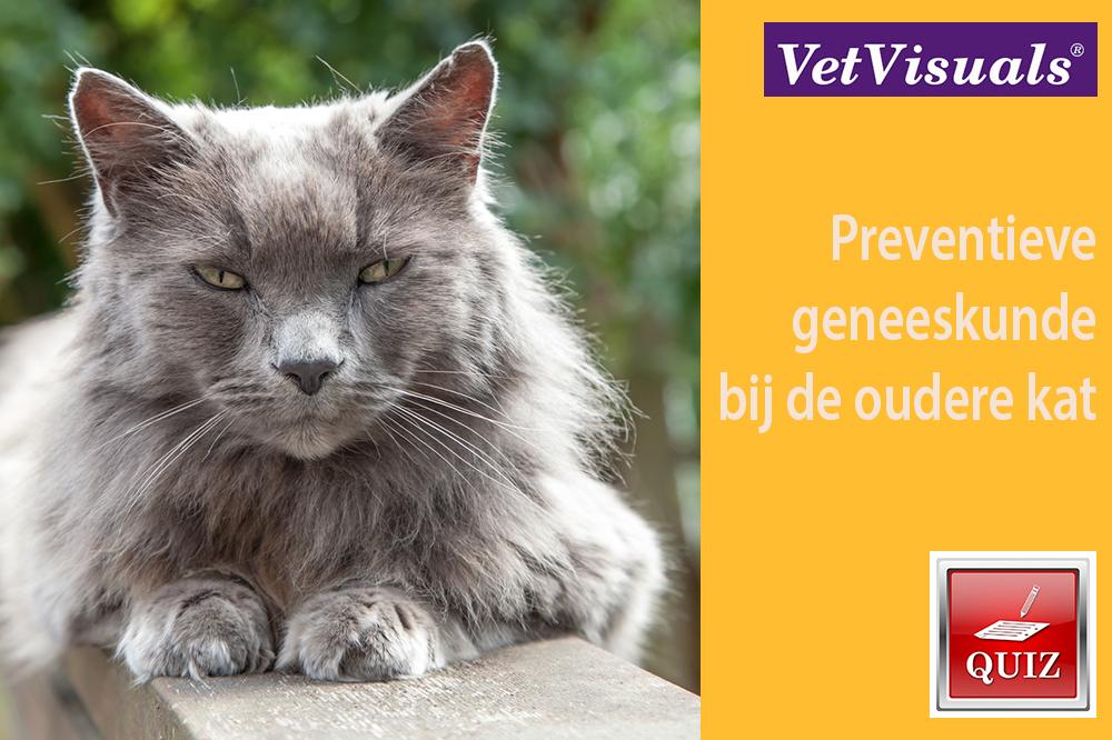Preventieve geneeskunde bij de oudere kat