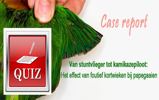 veterinaire nascholing effect van foutief kortwieken papegaaien