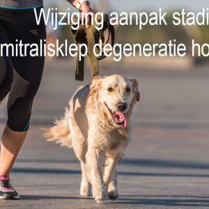 Wijziging aanpak stadium B mitralisklep degeneratie honden