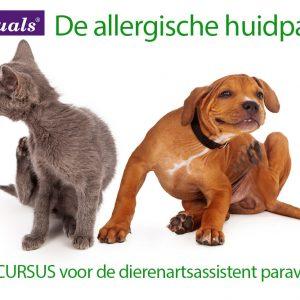 allergische allergie huidpatient