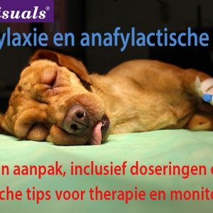 anafylaxie en anafylactische shock